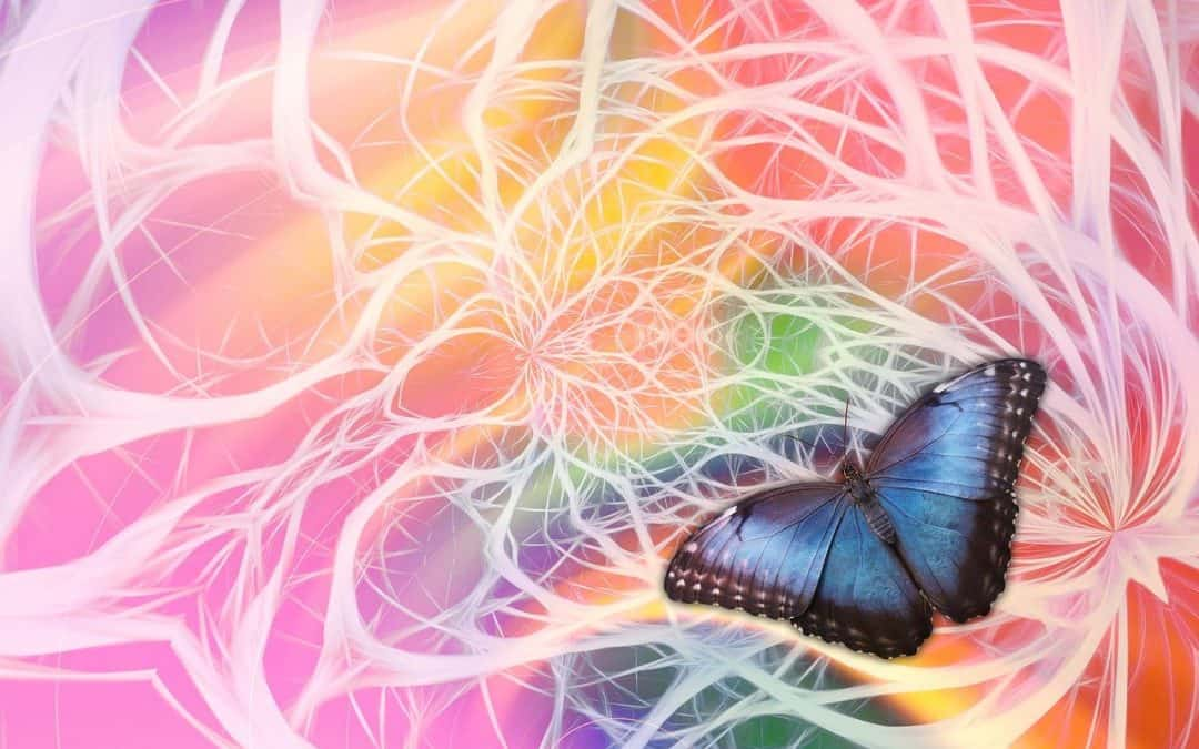 nervous system with butterfly